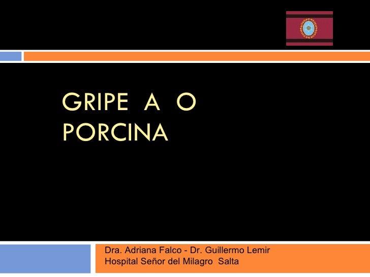 GRIPE  A  O  PORCINA Dra. Adriana Falco - Dr. Guillermo Lemir  Hospital Señor del Milagro  Salta