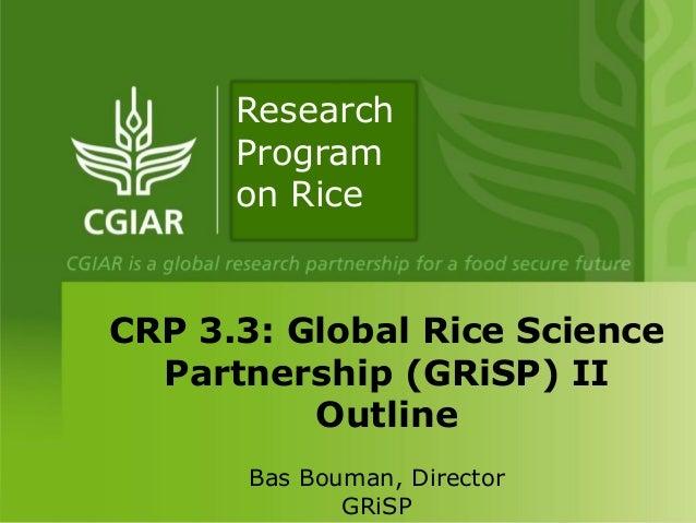 Bas Bouman, DirectorGRiSPCRP 3.3: Global Rice SciencePartnership (GRiSP) IIOutlineResearchProgramon Rice