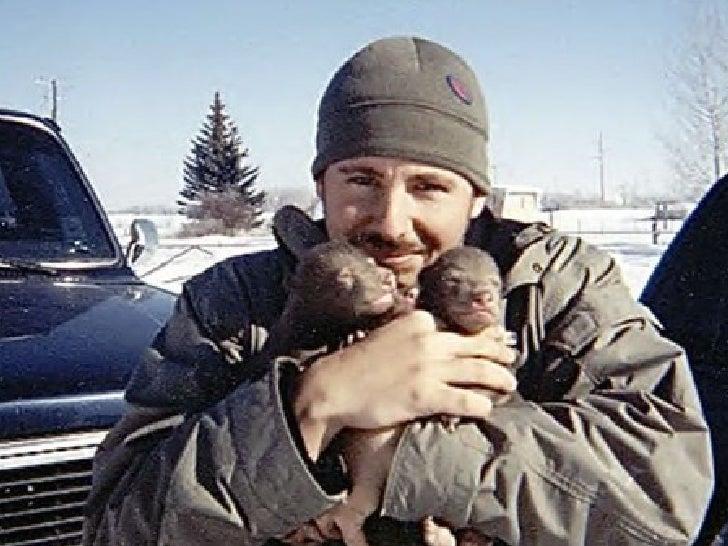 Ce mec a trouvé ces deux petits grizzly en Alaska   auprès de leur  mère morte. Un ourson a survécu et est parvenu  à matu...