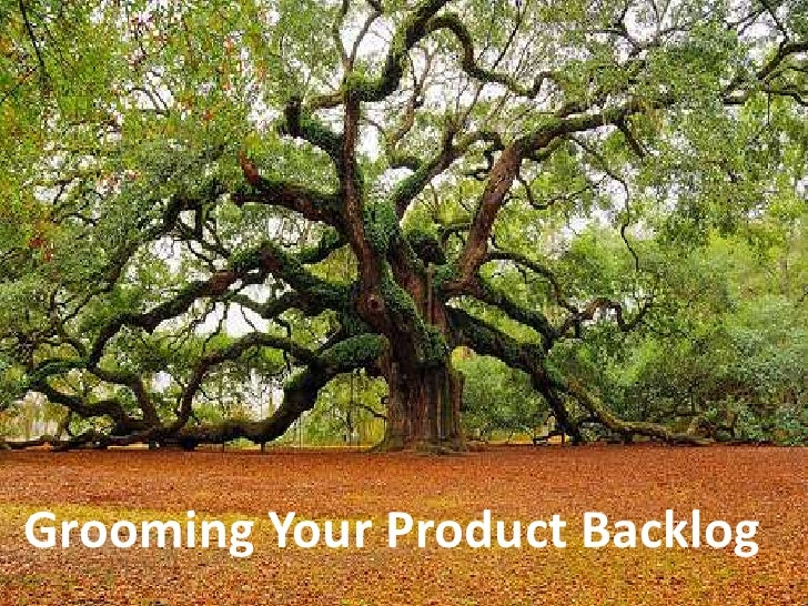Grooming Your Product Backlog<br />
