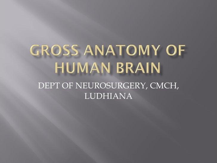 DEPT OF NEUROSURGERY, CMCH, LUDHIANA