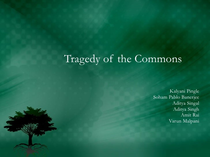 Tragedy Of The Commons Essay