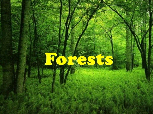         A forest is a community of trees, shrubs, herbs, and    associated plants and organisms that cover a considerable...