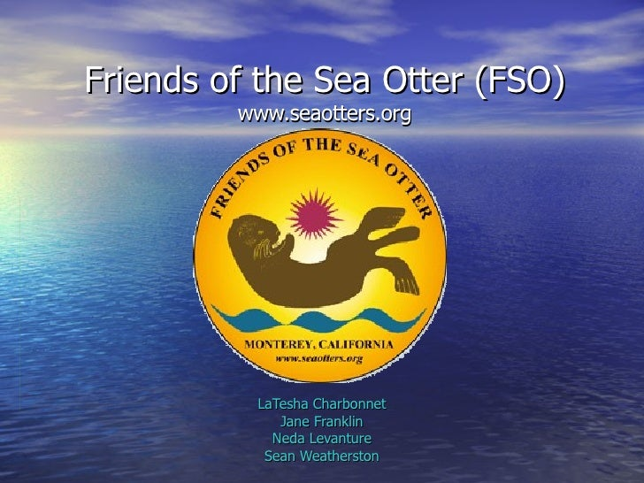 Friends of the Sea Otters