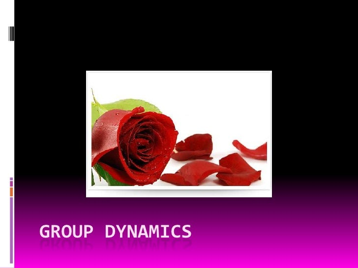 GROUP DYNAMICS<br />