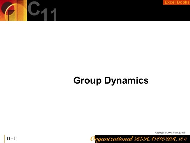 Organizational BEHAVIOUR, P G Copyright © 2006, P G Aquinas Excel Books 11 – 1 C11 Group Dynamics