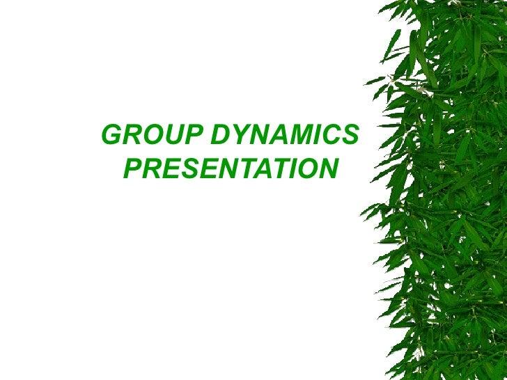 Groupdynamics hs