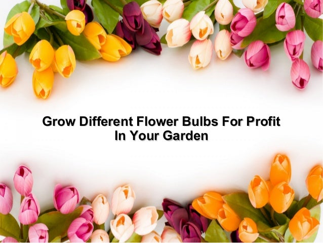 Grow different flower bulbs for profit in your garden