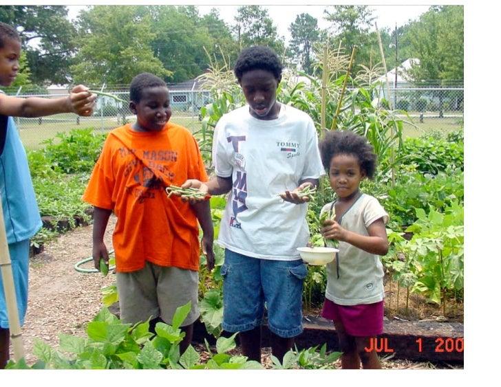 Grow haus yrg_5-11