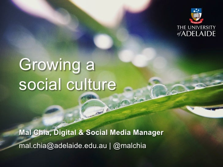 Growing asocial cultureMal Chia, Digital & Social Media Managermal.chia@adelaide.edu.au | @malchia