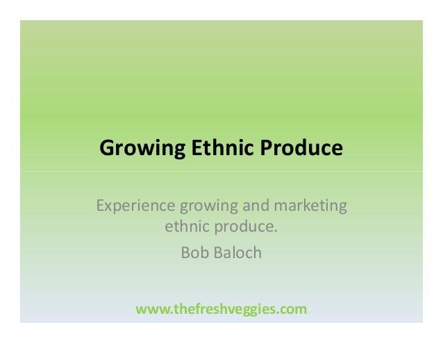 Growing Ethnic Produce Experience growing and marketing ethnic produce. Bob Baloch www.thefreshveggies.com