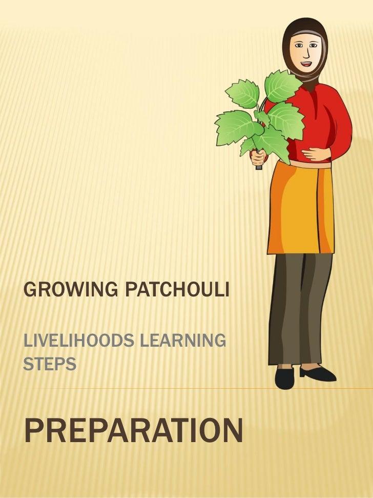 GROWING PATCHOULILIVELIHOODS LEARNINGSTEPSPREPARATION
