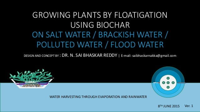 GROWING PLANTS BY FLOATIGATION USING BIOCHAR ON SALT WATER / BRACKISH WATER / POLLUTED WATER / FLOOD WATER DESIGN AND CONC...