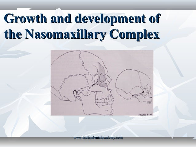Growth and development of the nasomaxillary complex /certified fixed orthodontic courses by Indian dental academy