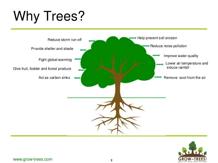 Grow Trees Presentation Corporates V6