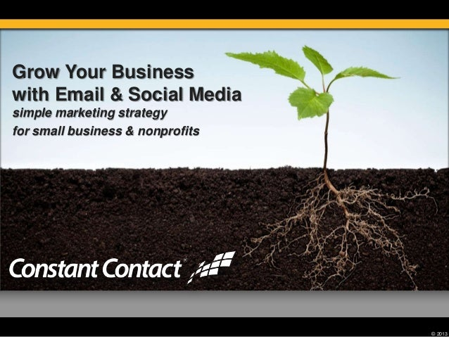 © 2013 Grow Your Business with Email & Social Media simple marketing strategy for small business & nonprofits