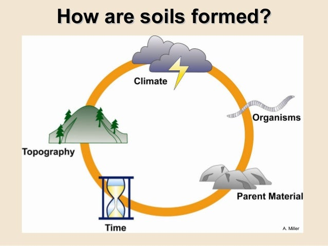Grow your own nevada fall 2011 soil amendments for Meaning of soil formation