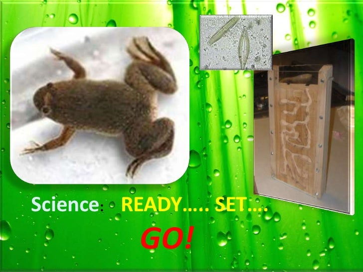 Science: READY….. SET….          GO!