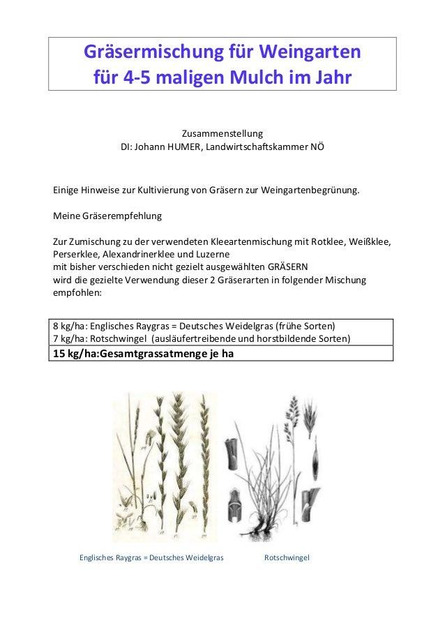 Gräsermischung für Weingarten für 4-5 maligen Mulch im Jahr Zusammenstellung DI: Johann HUMER, Landwirtschaftskammer NÖ Ei...