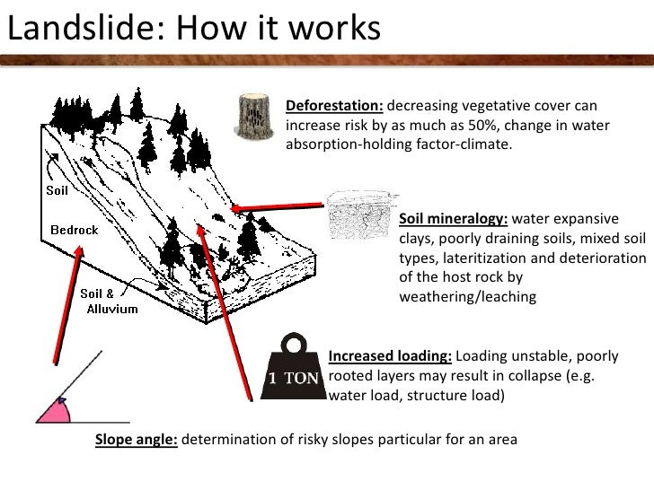 Article deforestation causes landslide how deforestation is linked to deforestation ccuart