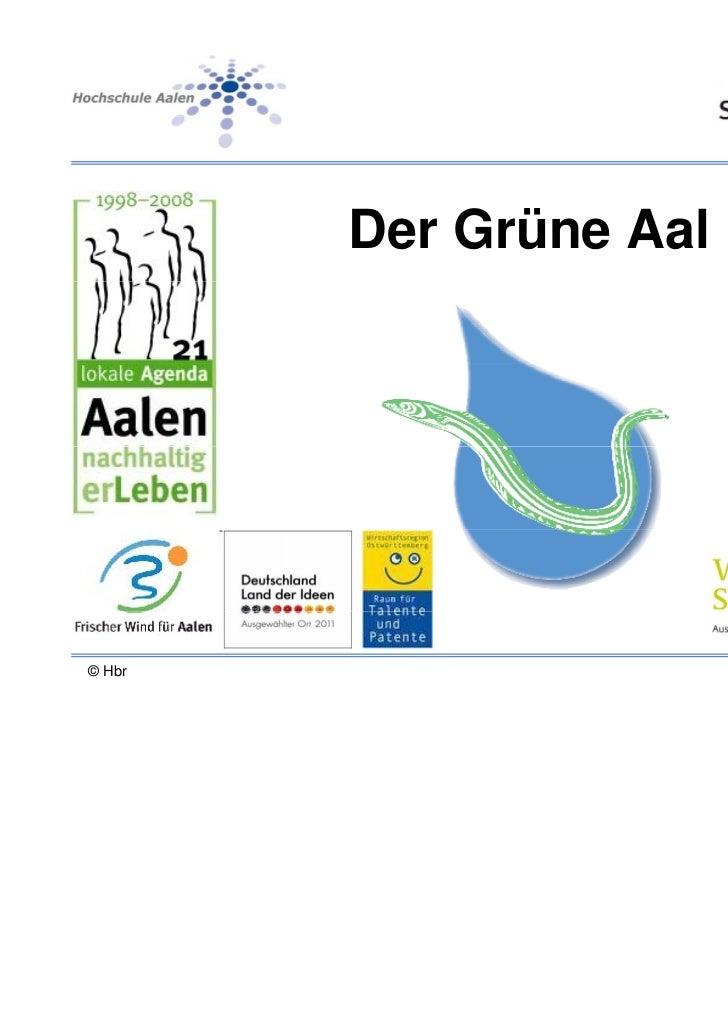 Der Grüne Aal© Hbr                   23/07/2011 - 1