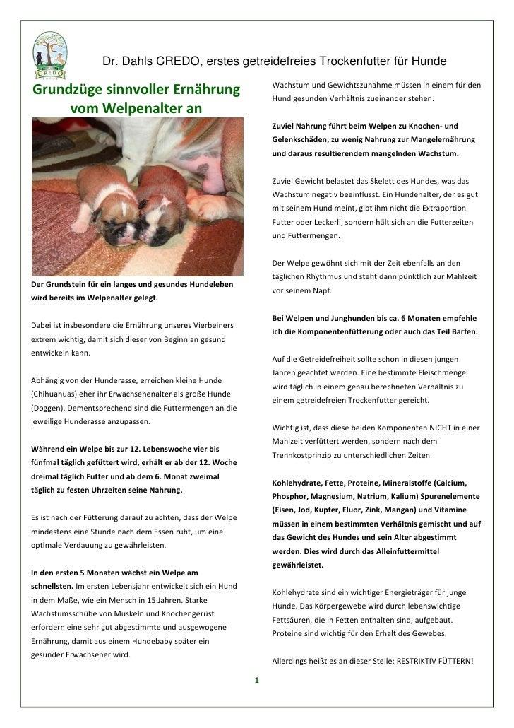 Grundzüge sinnvoller Ernährung vom Welpenalter an