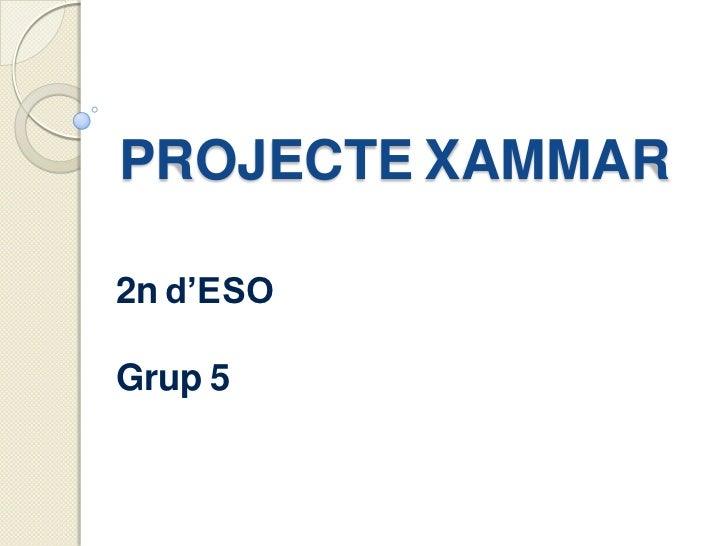 PROJECTE XAMMAR2n d'ESOGrup 5
