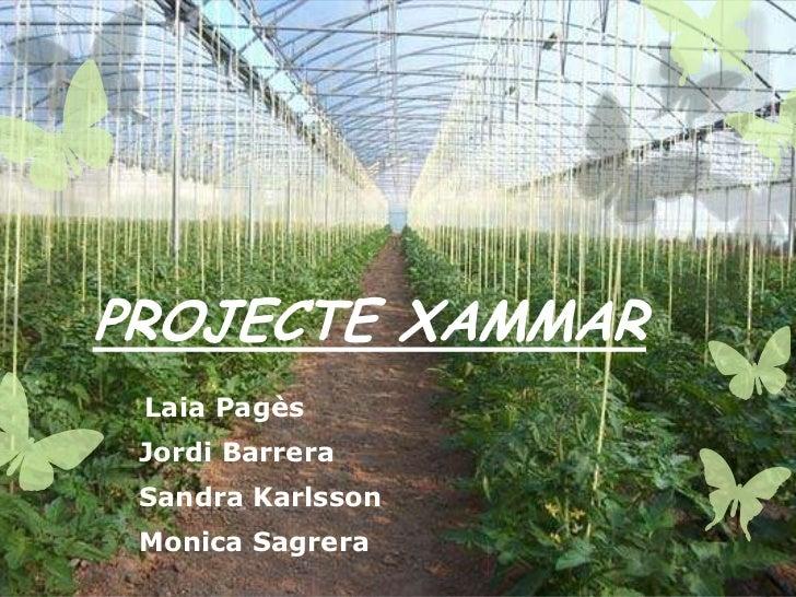 PROJECTE XAMMAR    Laia Pagès-   Jordi Barrera-   Sandra Karlsson-   Monica Sagrera
