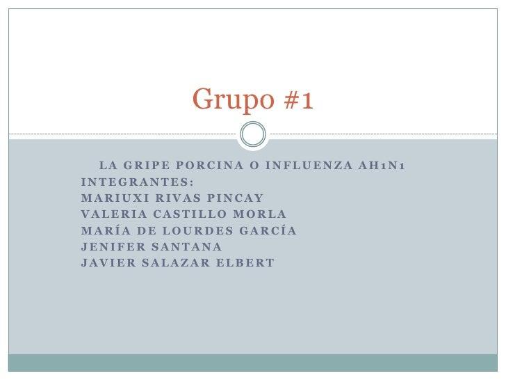 Grupo #1    LA GRIPE PORCINA O INFLUENZA AH1N1 INTEGRANTES: MARIUXI RIVAS PINCAY VALERIA CASTILLO MORLA MARÍA DE LOURDES G...