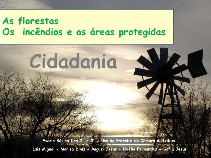 As florestas Os  incêndios e as áreas protegidas<br />Cidadania<br />Escola Básica Dos 2º e 3º ciclos do Estreito de Câmar...