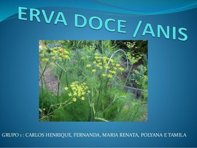 GRUPO 1 : CARLOS HENRIQUE, FERNANDA, MARIA RENATA, POLYANA E TAMILA