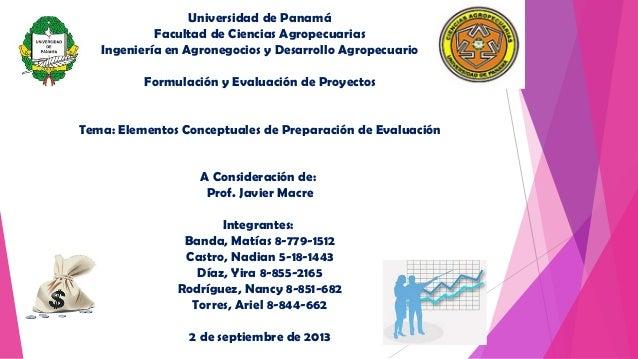 Universidad de Panamá Facultad de Ciencias Agropecuarias Ingeniería en Agronegocios y Desarrollo Agropecuario Formulación ...