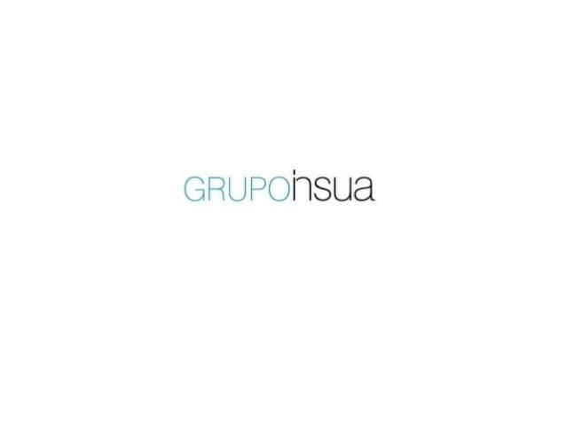 Grupo Insua Presentation