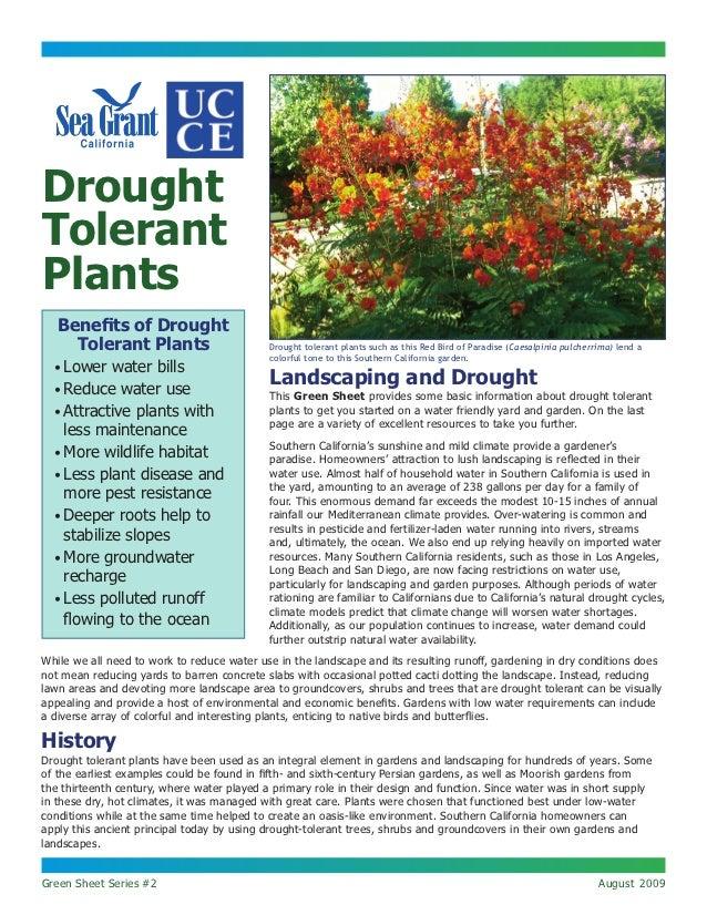 Drought Tolerant Plants - Sea Grant California