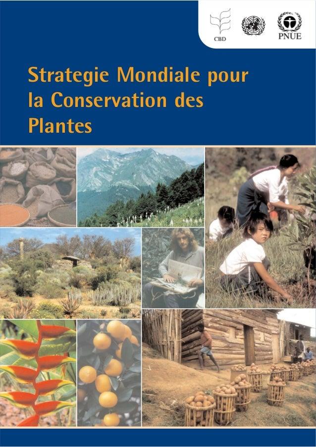 Strategie Mondiale pour la Conservation des Plantes