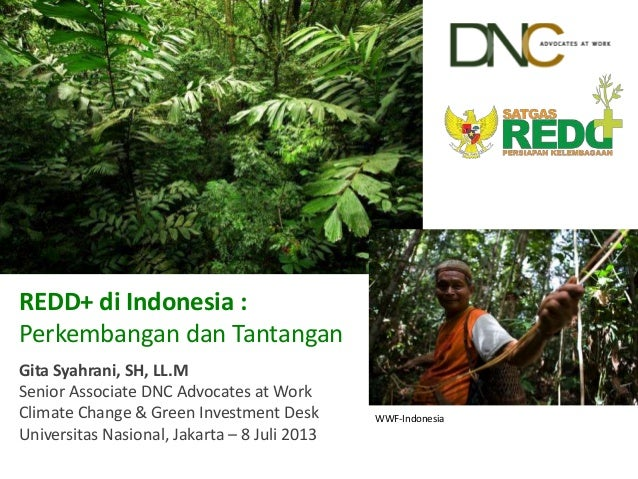 WWF-Indonesia REDD+ di Indonesia : Perkembangan dan Tantangan Gita Syahrani, SH, LL.M Senior Associate DNC Advocates at Wo...
