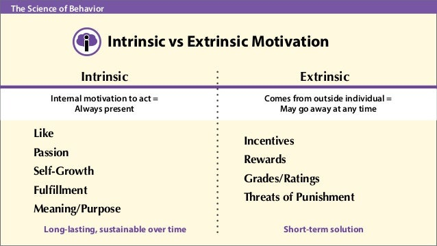 extrinsic motivation research paper