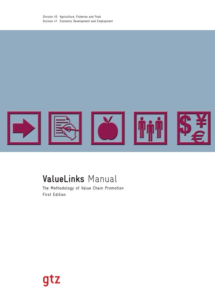 GTZ ValueLinks Manual