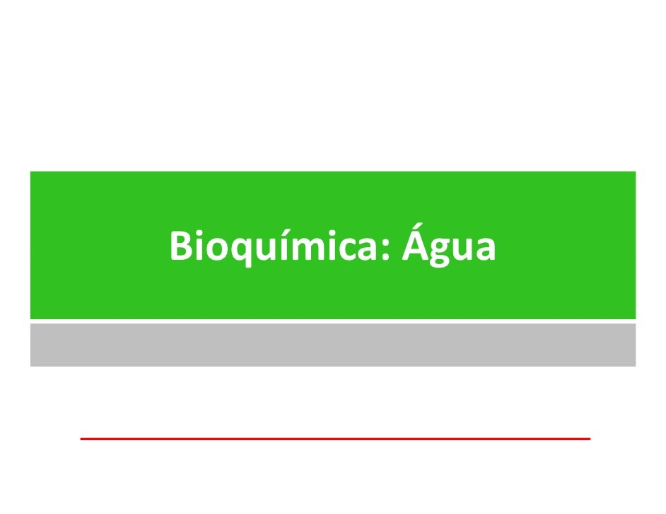 Bioquímica: Água