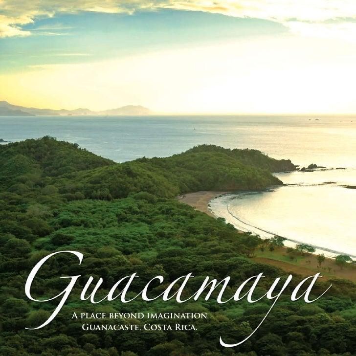 Guacamaya overview book feb 2009