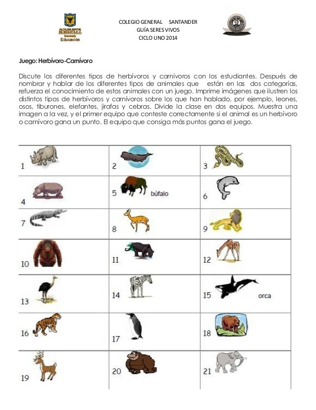 Imágenes de los animales herbívoros y carnívoros - Imagui