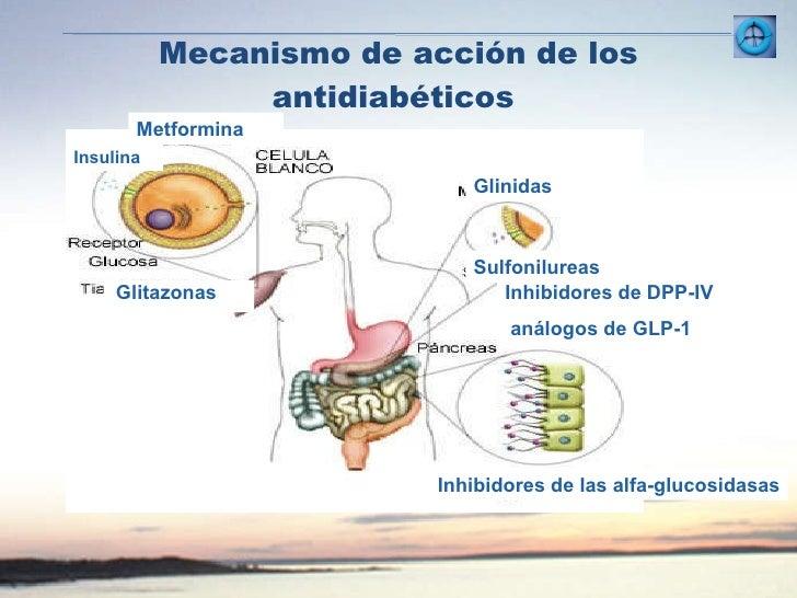 DM tipo2: Enfermedad progresiva, tratamiento hasta el control