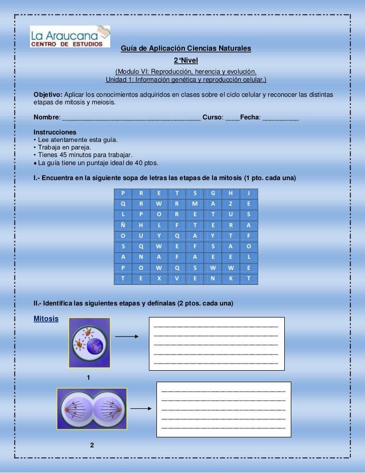 Guía de Aplicación Ciencias Naturales                                                  2°Nivel                            ...