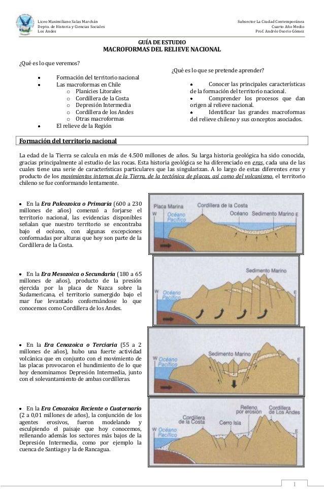 Guía de estudio: Macroformas