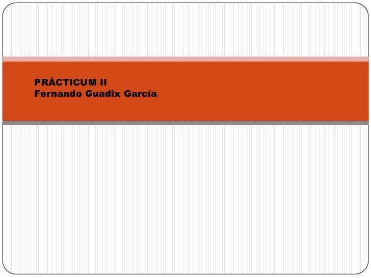 PRÁCTICUM II<br />Fernando Guadix García<br />