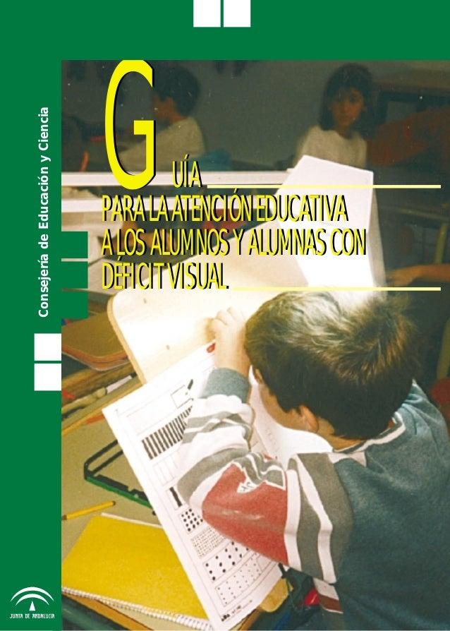 Guía educativa déficit visual