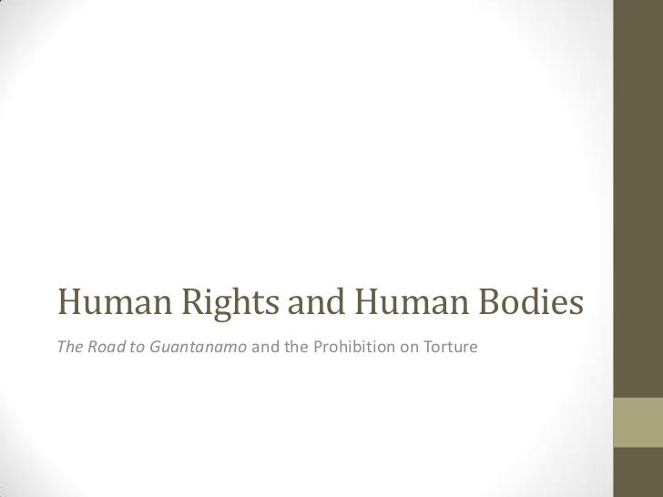 Human Rights and Human BodiesThe Road to Guantanamo and the Prohibition on Torture