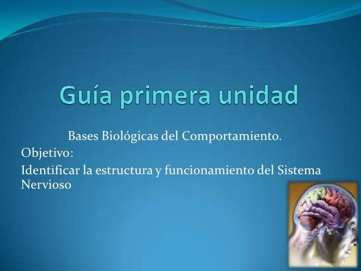 Guía primera unidad<br />Bases Biológicas del Comportamiento.<br />Objetivo:<br />Identificar la estructura y funcionamien...