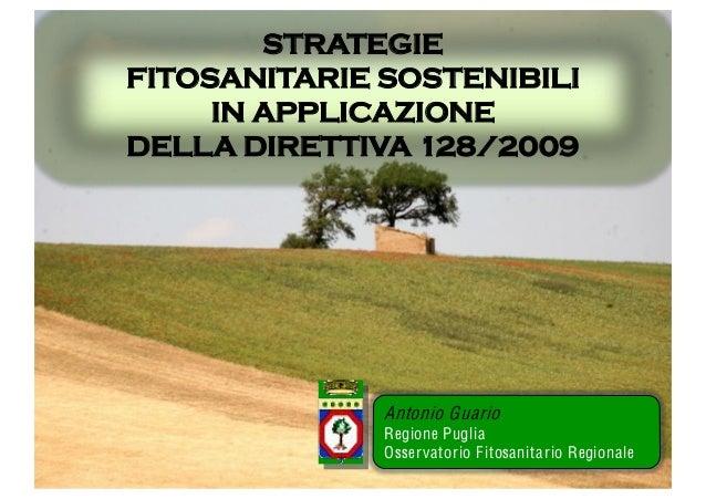 Guario pan-usi-sostenibili-fmv-2012-pdf