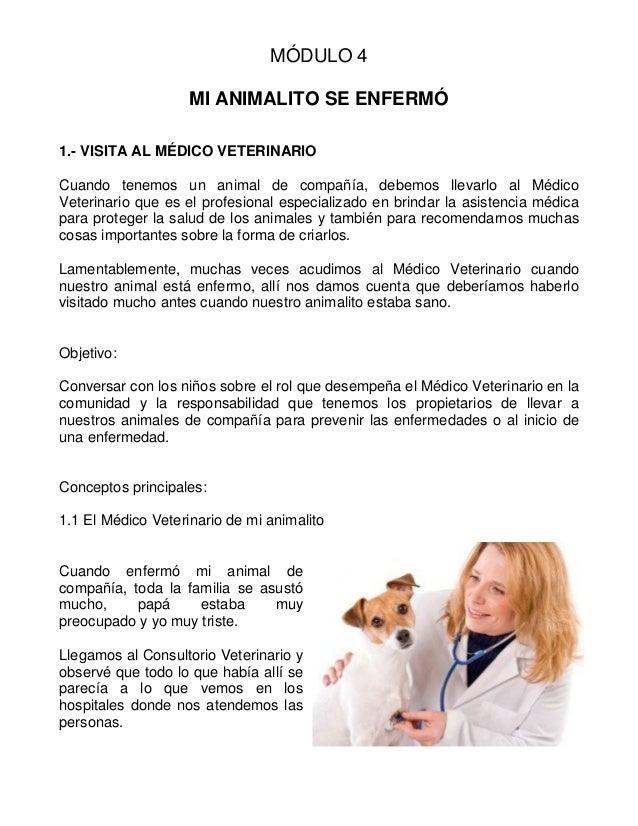 Preescolar Guía sobre tenencia responsable de animales capitulo 4